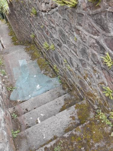 L'escalier au plastique ROMN.JPG