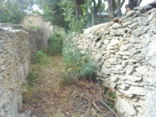 Le petit chemin de pierres sèches.JPG