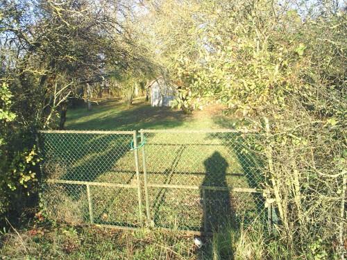L'ombre sur la grille et l'herbe.JPG