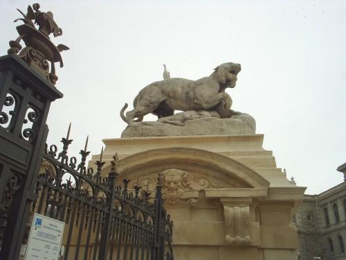 Lionne de garde.JPG