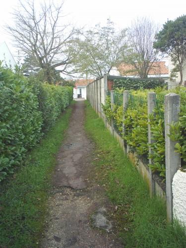 Sentier du jardinet.JPG