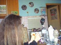 Les cheveux, les mains et le foutoir ROMNESTRAS.JPG
