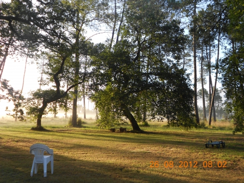 Chaises blanches, et arbres RMN.JPG