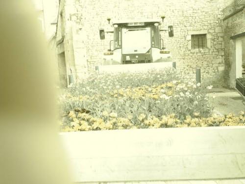 Cul de tracteur à fleurs.JPG